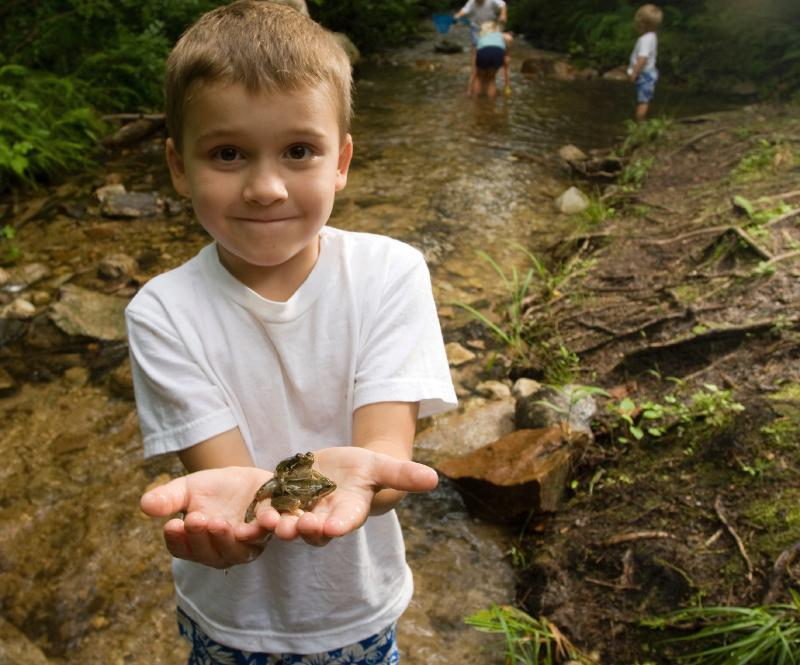 Boy with Frog Stream