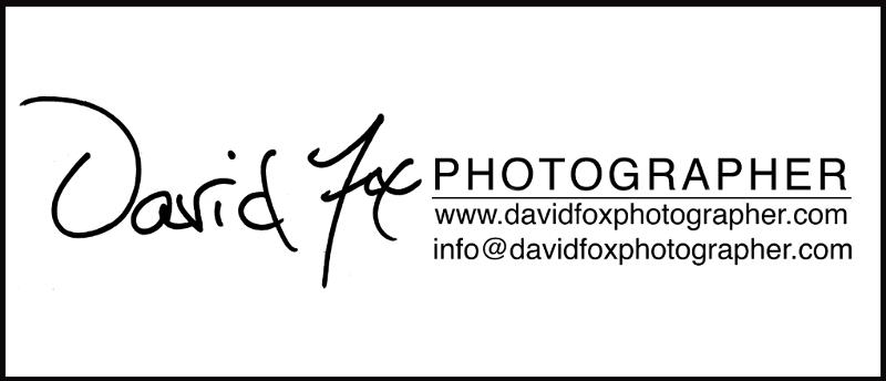 David Fox Photography Logo A