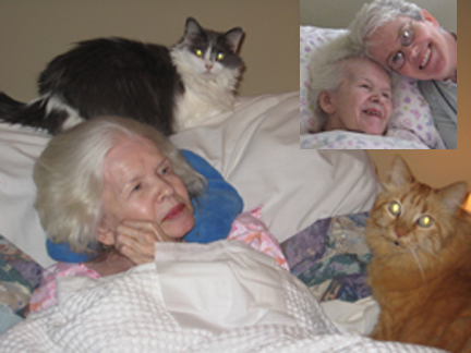 Ginny & Donnis with cats