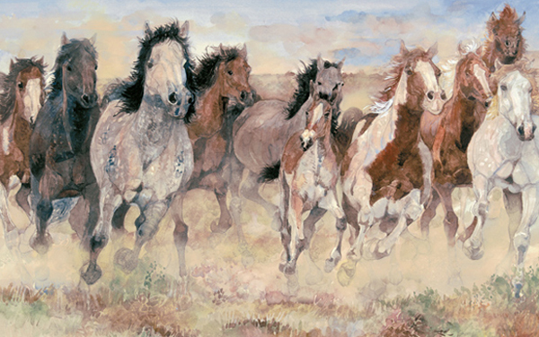 Black Cowboy, Wild Horses by Jerry Pinkney