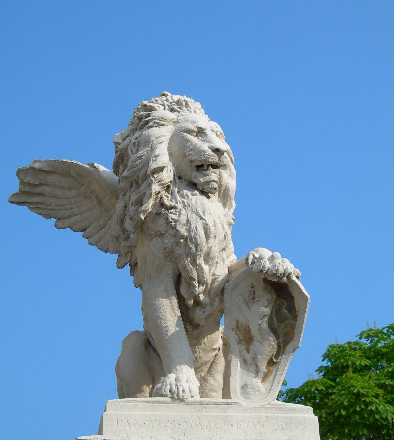 CIMBA lion