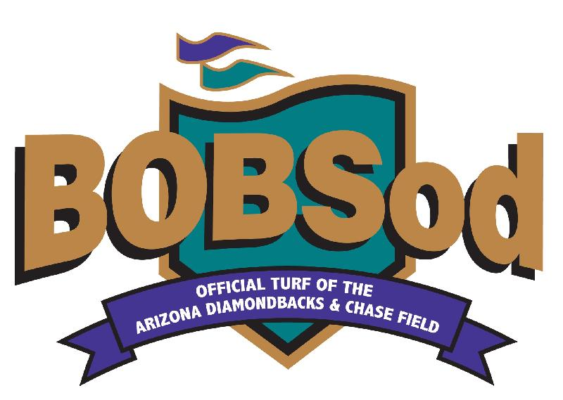Bob Seed Ryegrass Available Now For Overseeding
