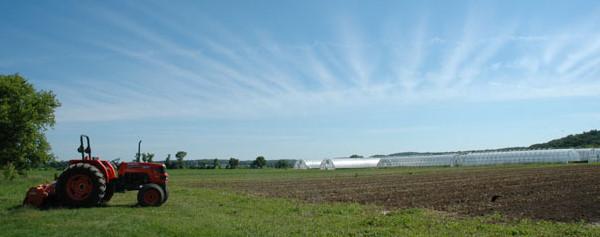 Tractor, Field, Hoops & Sky