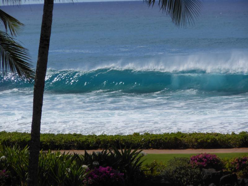 Gratuitous Hawaii Photo