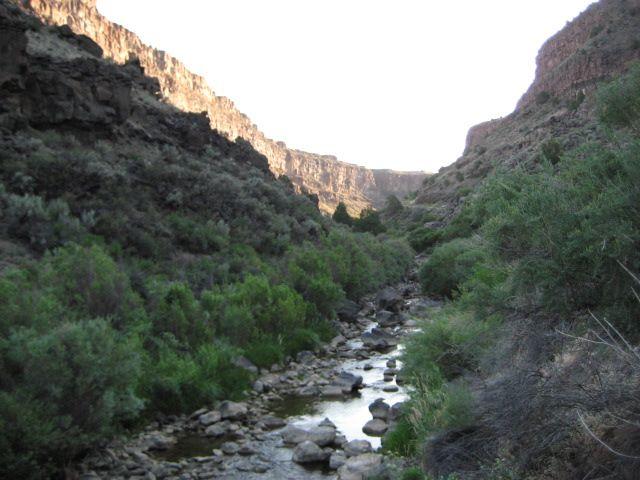 Rio Pueblo green