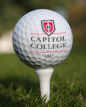 Logo golf ball