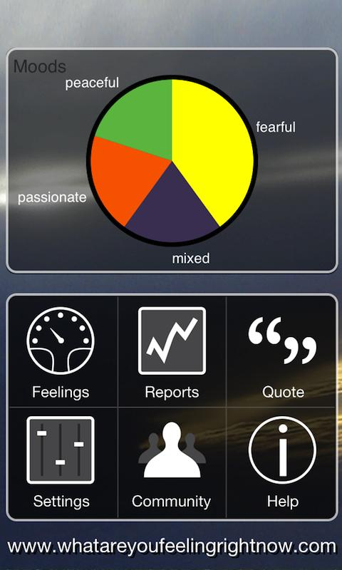 dashboard of app showing pie graph and menu items