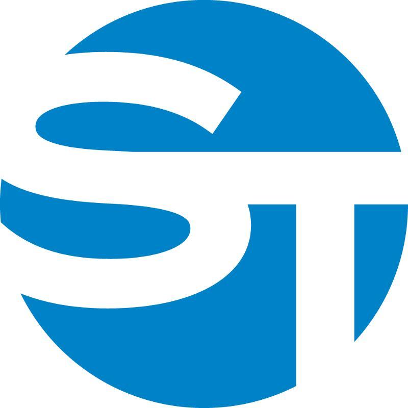 Strauss Troy Circle Icon
