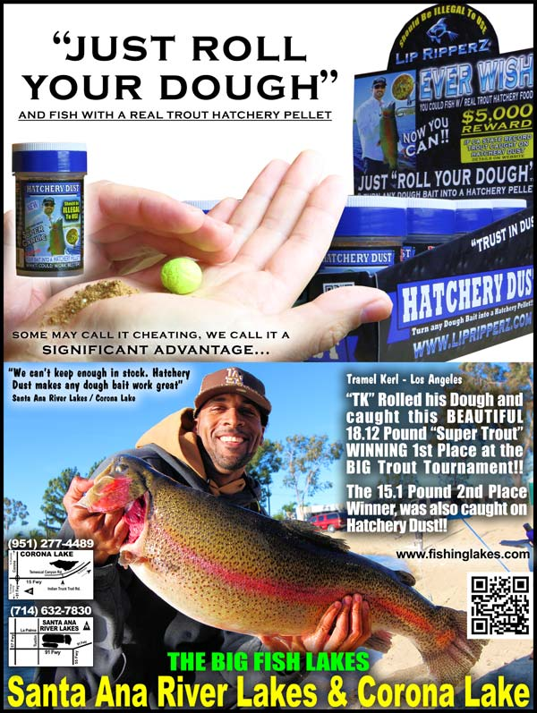 """big news"""" - lightning trout!! just stocked!! see video + new, Fly Fishing Bait"""