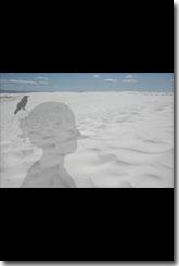Marcia Smith, Raven & I, White Sands