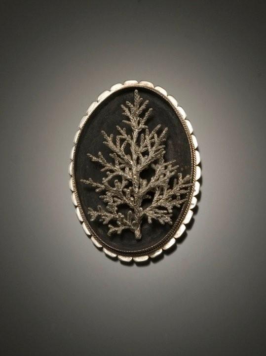 Cedar Brooch