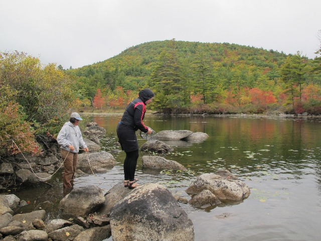Checking crayfish traps on Squam