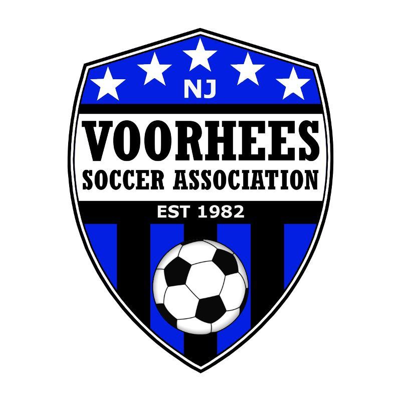 VSA Logo New