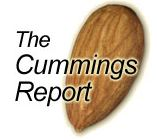 Cummings Report