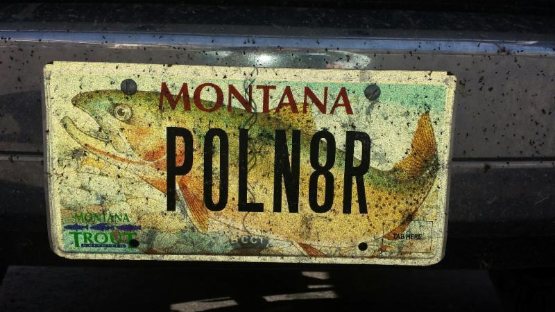 Poln8r  license plate