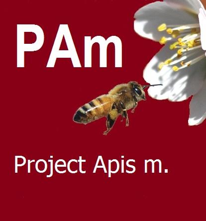 PAm fb logo