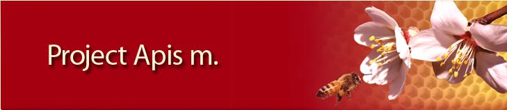 Project Apis m. Logo