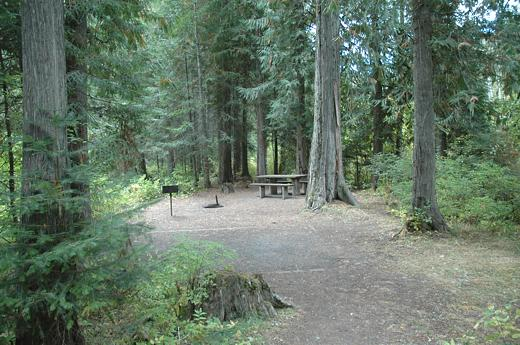 camping in the deep woods Go camping in wisconsin, featured campgrounds including lakeside campsites   on wood and huber lakes and protects handsaw creek and woods lake outlet   a deep gorge called the dalles of the st croix is the scenic focus of.