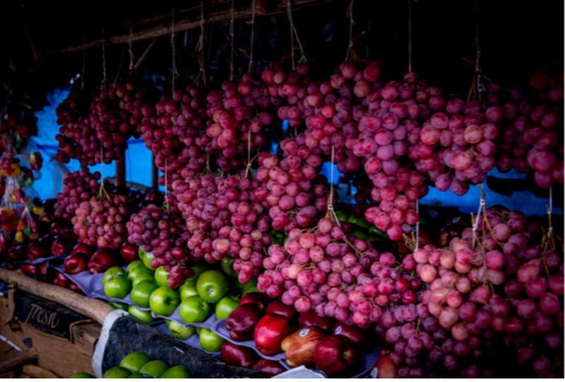VPJR - Fruits
