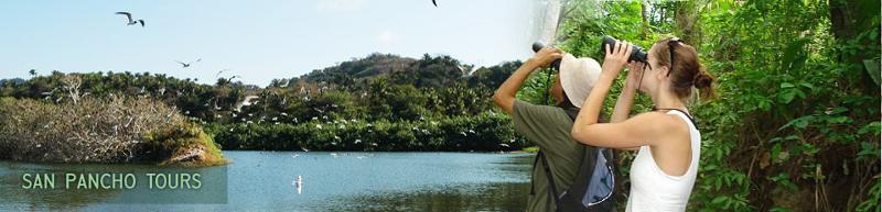 Birding in San Pancho