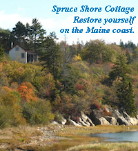 Spruce Shore