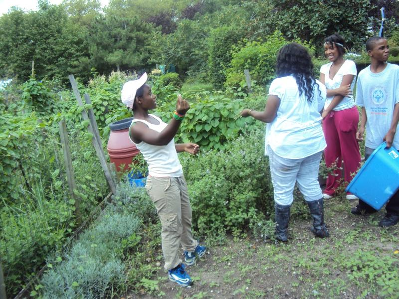 Garden Girls 2