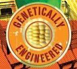 Graphic reading Genetically Engineered