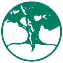 PlaneTree Logo without name