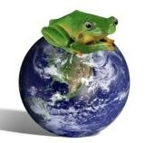 Frog perched on Earth