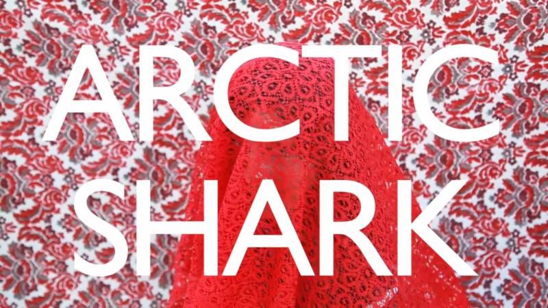 Quilt - Arctic Shark