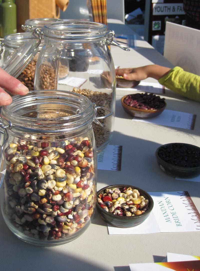 Grains display at Farm Day
