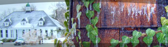 Winter Banner 2