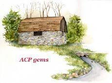 acp pic