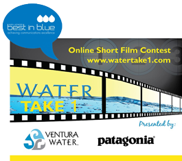 Best in Blue Water Take 1 graphic