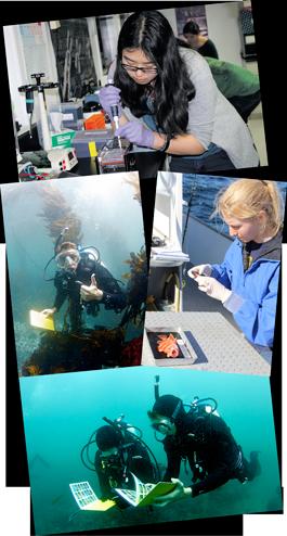 Coastal Bio Labs