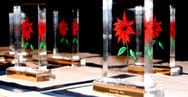poinsettia award