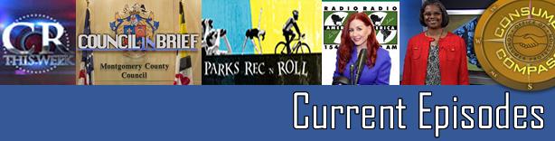 CCM Newsletter Banner
