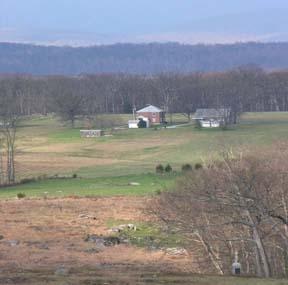 Homes Along Emmitsburg Road