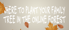 Plant Your Family Tree