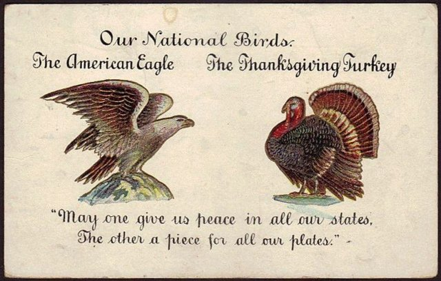 Turkey & Eagle