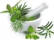 Herbal Preparation Class