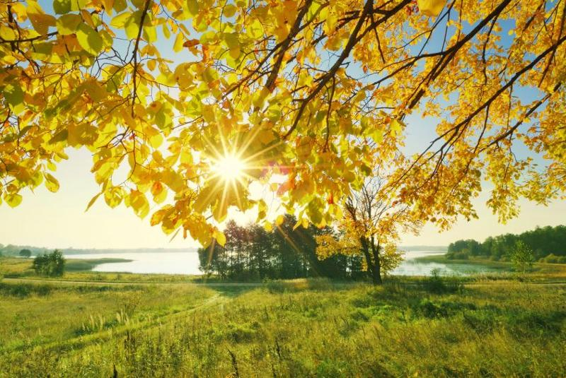Maine coast autumn