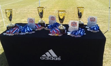 State Cup Awards
