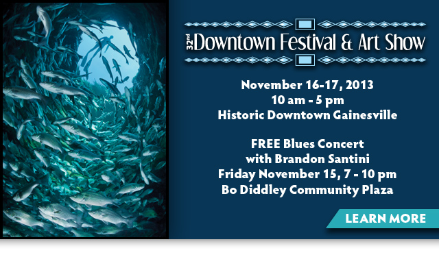 32nd Annual Downtown Festival and Art Show