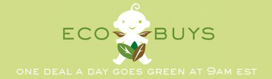 EcoBabyBuys.com Logo
