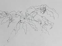 Carolyn's drawing SnoS12
