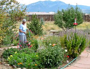 Marcia watering garden
