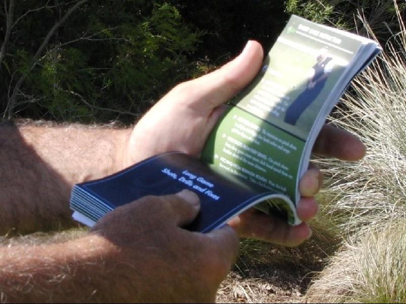 Pocket Pro