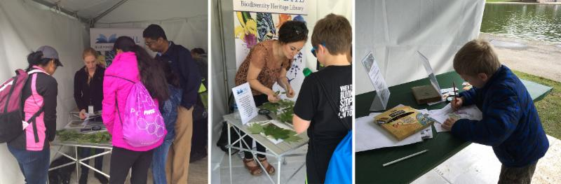 Visitors to the BHL Booth at BioBlitz 2016