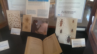 Celebrating the Biodiversity Heritage Library. Supporting Scientists Worldwide